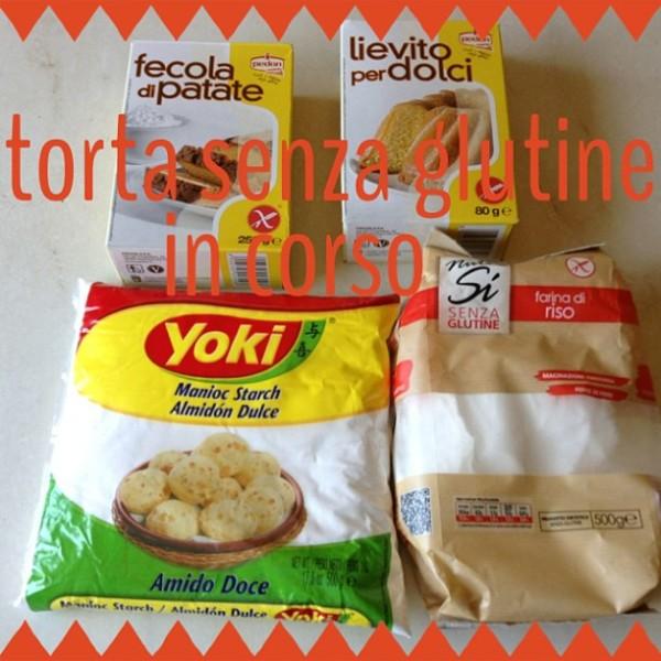 farine-senza-glutine-per-torta